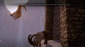 dragon-age-inquisition-goats